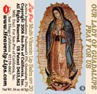Our Lady of Guadalupe (1)